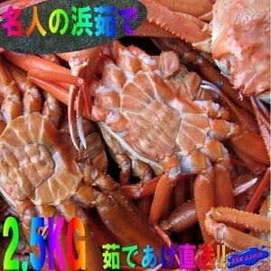 名人の浜茹で蟹AA-2.5kg/ボイル冷凍 山陰境港産...「冷紅蟹A2.5kg」