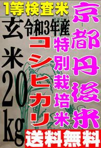 【送料無料 一等検査米 特別栽培米】新米 令和3年度産 京都 丹後 コシヒカリ 玄米 20kg