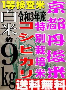 【送料無料 一等検査米 特別栽培米】新米 令和3年度産 京都 丹後 コシヒカリ 白米 約9kg