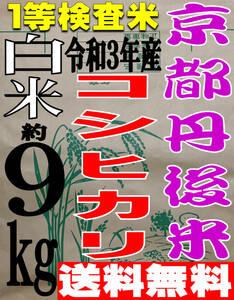 【送料無料 一等検査米】新米 令和3年度産 京都 丹後 コシヒカリ 白米 約9kg