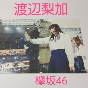 欅坂46!櫻坂46!渡辺梨加!欅共和国2019のポストカード!1枚