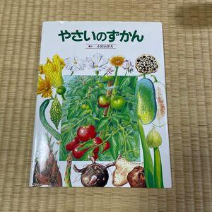 絵本図鑑シリーズ 8 やさいのずかん/小宮山洋夫