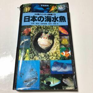 日本の海水魚★山渓ハンディ図鑑13★吉野雄輔
