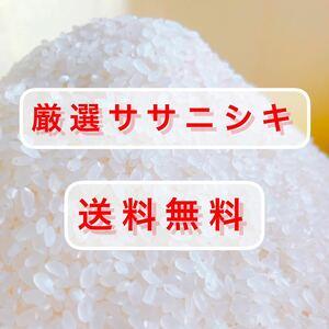 新米 5kg 厳選ササニシキ 令和3年 山形県産