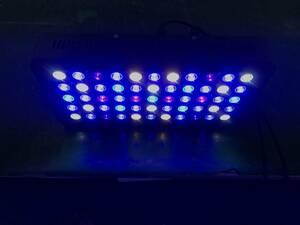 2台セット サンゴの育成と演色に特化したLEDライト水槽照明 PSE技術基準適合 サンゴ水槽 海水魚 珊瑚 熱帯魚 水草 165W ブラックボックス