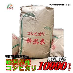 即決!令和2年産 送料無料 新潟 コシヒカリ玄米 30kg