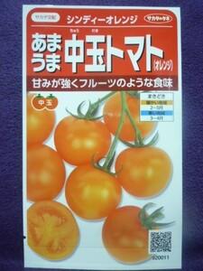 ★種子★処分★ あまうま中玉トマト(オレンジ) シンディーオレンジ V サカタのタネ 21.10 ◎フルーツ♪ (ゆうパケット便可能)