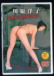 DVD:川原洋子/DANGEROUS