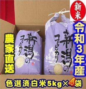 新米・令和3年産新潟コシヒカリ 白米5kg×4個★農家直送★色彩選別済24