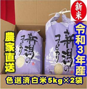 新米・令和3年産新潟コシヒカリ 白米5kg×2個★農家直送★色彩選別済20