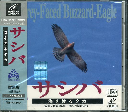 着DI-03/CD[未開封]海を渡るタカ サシバ
