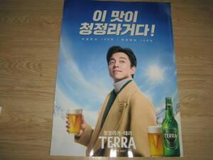 コンユ コン・ユ「TERRA」ポスター