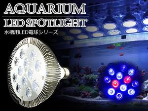 LED 電球 スポットライト 24W 青6赤2紫外線4灯 UV付 照明 E26 LEDスポットライト 電気 水草 サンゴ 熱帯魚 観賞魚 植物育成