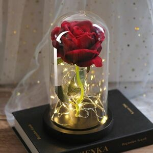 送料無料 薔薇 LED 植物 ライトアップ ドーム ローズ バレンタイン 誕生日 ドライフラワー ブリザードフラワー 花材 ハンドメイド