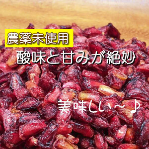 【BI】 ドライフルーツ ザクロ 70g ざくろ 無添加 砂糖不使用 ノンシュガー ザクロシード 種 シード