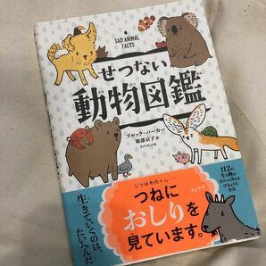 せつない動物図鑑/ブルックバーカー/服部京子