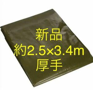グリーンシート 約2.5×3.4m レジャーシート