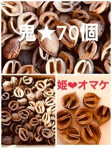 【送料無料】鬼胡桃の殻 70個 + 姫胡桃の殻オマケ★ 綺麗です