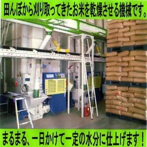 新米 令和3年 愛知産 ミルキークイーン 白米30kgから白米24kgに変更 【送料無料・一等品質】