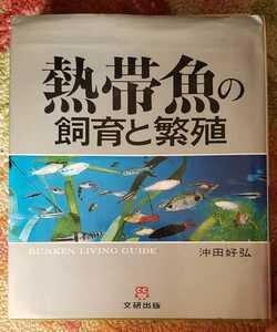熱帯魚の飼育と繁殖 沖田好弘【管理番号G2cp本1930】