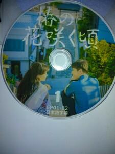 韓国ドラマ 椿の花咲く頃 DVD10枚全話20話