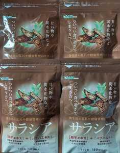 サラシアをひと粒180mg☆サラシア 12ヶ月分(2023.12)☆コタラノール イヌリン 菊芋 バナバ サラシア☆サプリメント シードコムス