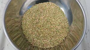 令和3年9月 コシヒカリ くず米24kg (エサ用に)
