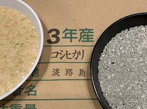 令和3年産 新米 兵庫県淡路島産コシヒカリ玄米25Kg産地直送 2021