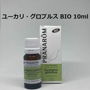 プラナロム ユーカリグロブルス BIO 10ml 精油 PRANAROM