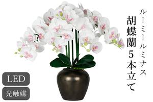 ルーミールミナス 胡蝶蘭 豪華5本立て 黒鉢 お祝い 実用的 贈り物 プレゼント コードレス 電池式 LED 花 ギフト 照明 グランドルミナス