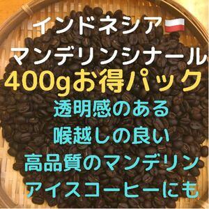 自家焙煎 インドネシア マンデリンシナール400g 豆又は粉