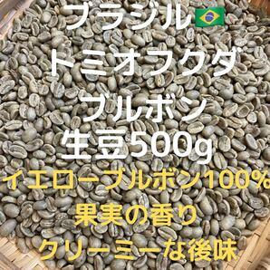 ブラジル トミオフクダ ブルボン 生豆500g