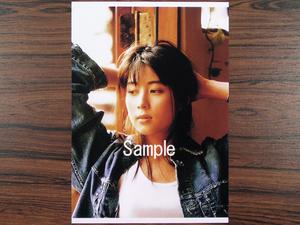 坂井泉水(ZARD・蒲池幸子) 2L写真 No.177