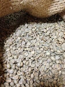 新品_松屋珈琲 コーヒー生豆 タンザニア (キリマンジャロ)AA (1kg袋)