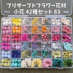 プリザーブドフラワー花材 小花42種 83
