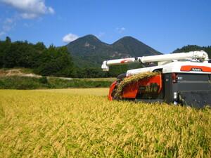うまいコメ!! 令和3年・新米・山形県産・ひとめぼれ・玄米量30K・白米量で27k・生産者直送です!