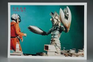 18×26cm WFワンフェス 限定品 M1号 ハヤタ シン ウルトラマン 宇宙忍者 バルタン星人 大判 ブロマイド 写真 スチール ヒーローメモリアル