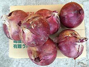 名手農園 淡路島 赤玉ねぎ 2021年産 赤たまねぎ 5kg 期間限定サービス価格で販売中!