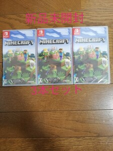 Nintendo Switch Minecraft マインクラフト 3本セット