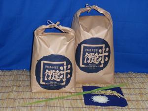 愛媛 三間産 減農薬 特別栽培米 令和3年産 ( もち米 ) 玄米 30kg 百姓直送 送料無料 宇和海の幸問屋