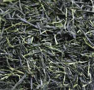 新茶 玉露 送料 120円 農薬・肥料不使用 加茂自然農園のお茶