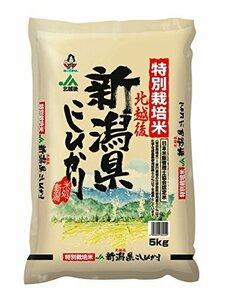 5kg こしひかり 【精米】新潟県北越後産 5kg 特別栽培米白米 平成30年産