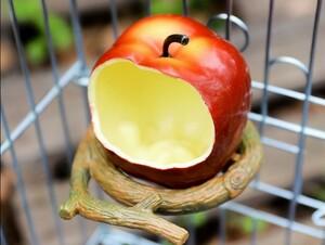 鳥用品 餌入れ フードボウル 小鳥 小動物 リンゴ1個 ペット用品