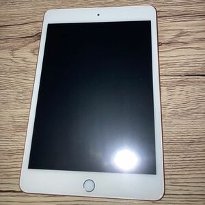iPad mini 5 64GB ゴールド 付属品、カバー付き Apple Wi-Fiモデル