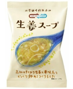 NATURE FUTURe 生姜スープ  10.6g    【コスモス食品 フリーズドライ 国産 国内産 化学調味料無添加 ジンジャースープ】