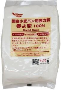 パイオニア企画 国産小麦パン用強力粉 春よ恋100%  800g     【製菓材料 洋粉 こだわり食材 小麦粉】