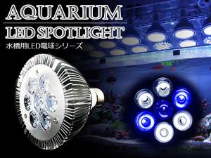 LED 電球 スポットライト 14W 白4/青2/紫外線1灯UV 水槽照明 E26 LEDスポットライト 電気 水草 サンゴ 熱帯魚 観賞魚 植物育成