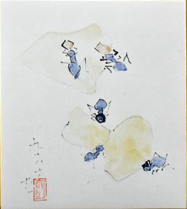 ...!     нести  долина  Мамору  один        ...:  цвет  бумага        [   Ant  (  лето  )  ]     *  количество  есть  может     регулярный  блеск  Галерея