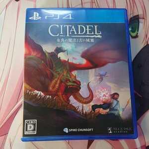 PS4 PS4ソフト シタデル ファンタジー サバイバルゲーム