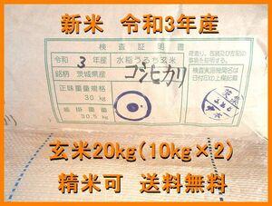 新米 令和3年産 コシヒカリ 茨城県産 一等米 玄米20kg(10kg×2) (精米可) 全国送料無料